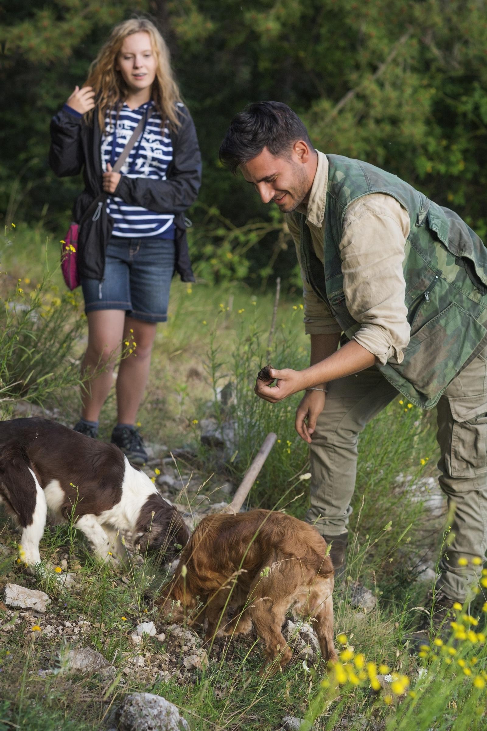 Mely kutyafajták a legjobb szarvasgombászok? Hogy lehet ebből megélni?
